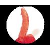 Jel Vibrator Penis